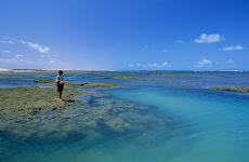 garoto-pescando-flecheiras1